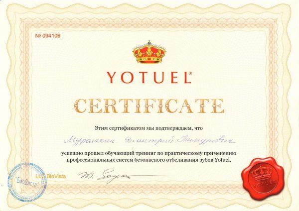 2009.04.25. Обучающий тренинг по практическому применению профессиональных систем безопасного отбеливания зубов Yotuel
